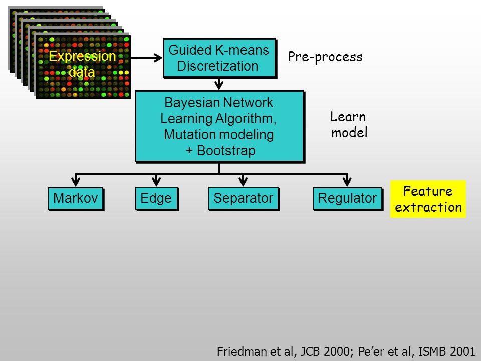Guided K-means Discretization Guided K-means Discretization Markov Separator Edge Regulator Bayesian Network Learning Algorithm, Mutation modeling + Bootstrap Bayesian Network Learning Algorithm, Mutation modeling + Bootstrap Pre-process Learn model Feature extraction Expression data Friedman et al, JCB 2000; Pe'er et al, ISMB 2001