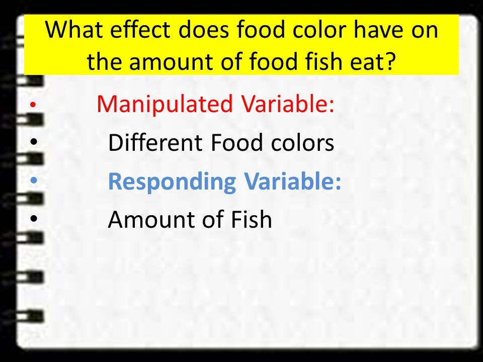 Hypothesis Example If fish food is very colorful Then fish will eat a greater amount Because they will be able to see eat it better even in murky water