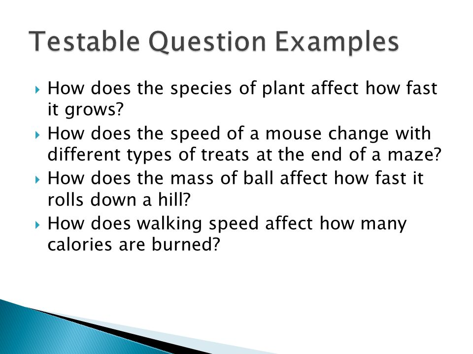  How does the species of plant affect how fast it grows?  How does the speed of a mouse change with different types of treats at the end of a maze?