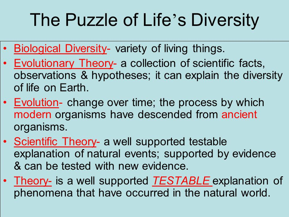 The Puzzle of Life ' s Diversity Biological Diversity- variety of living things.