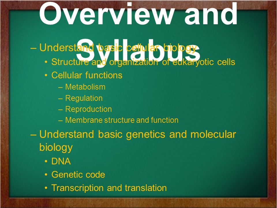 Overview and Syllabus –Understand basic cellular biology Structure and organization of eukaryotic cells Cellular functions –Metabolism –Regulation –Reproduction –Membrane structure and function –Understand basic genetics and molecular biology DNA Genetic code Transcription and translation