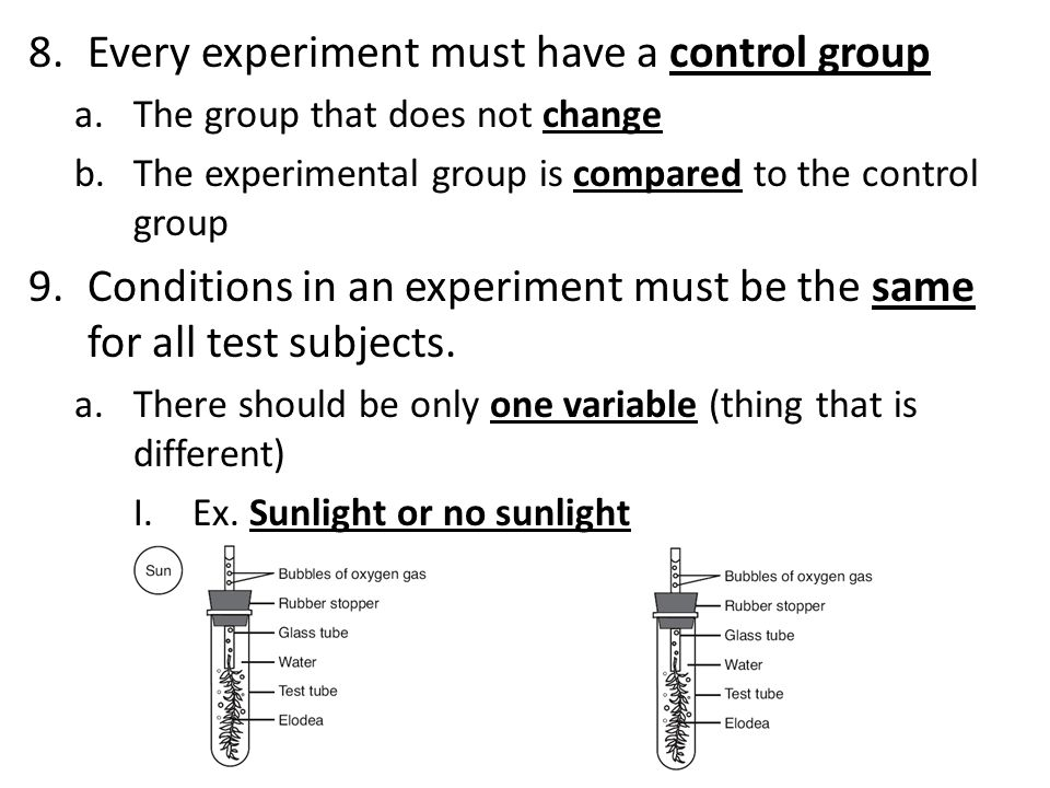 10.Data tables are used for organizing scientific data 11.A line graph has 2 sets of numerical data a.Independent variable is known before the experiment and is written on the horizontal (side by side) b.Dependent variable is what we measure in the experiment and goes on the vertical line (up and down) c.Do not connect the line to (0,0), unless there is a point located there.