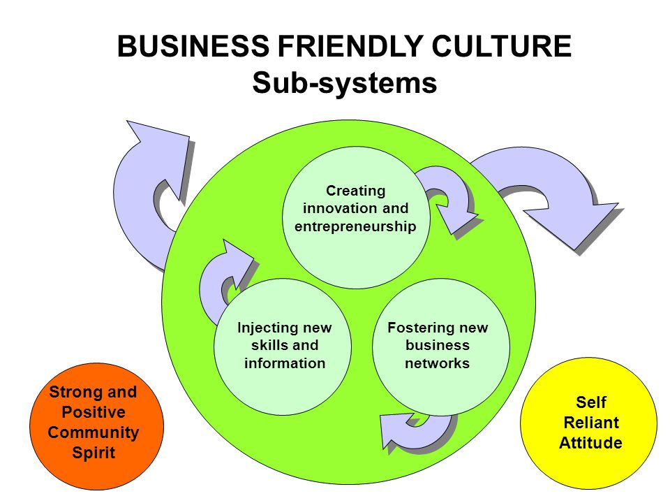 Self Reliant Attitude BUSINESS FRIENDLY CULTURE Sub-systems Strong and Positive Community Spirit Injecting new skills and information Creating innovation and entrepreneurship Fostering new business networks