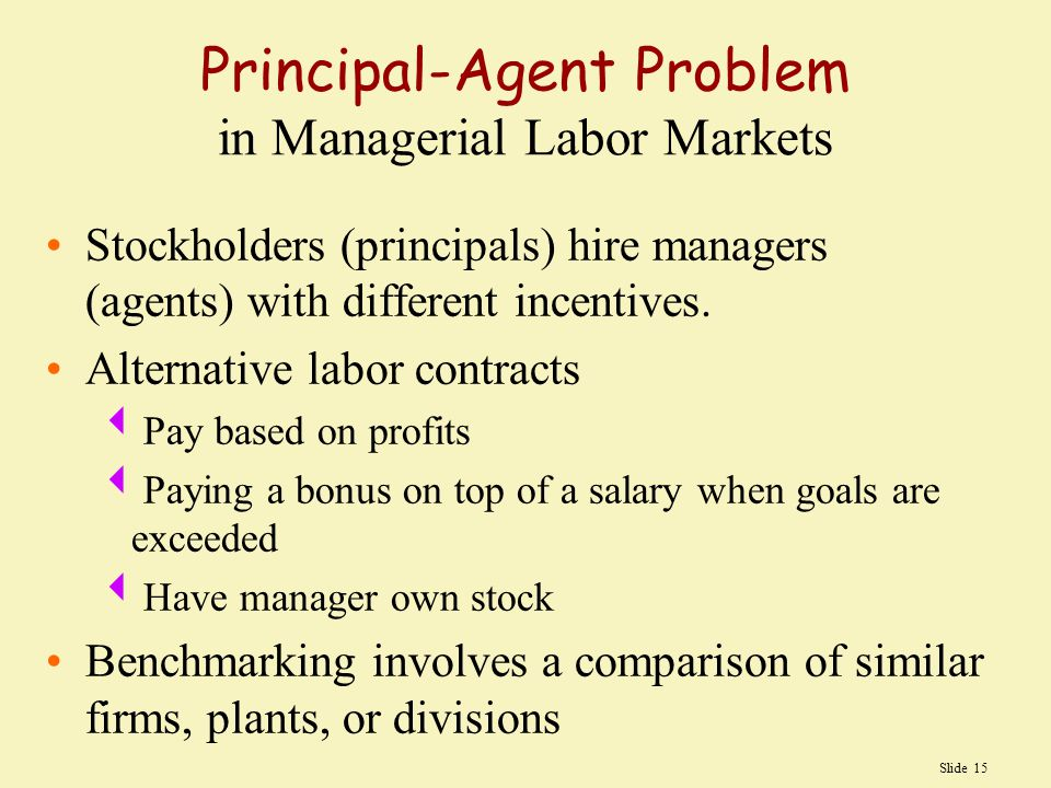 Slide 15 Principal-Agent Problem in Managerial Labor Markets Stockholders (principals) hire managers (agents) with different incentives.