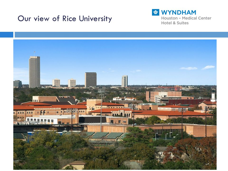 Our view of Rice University