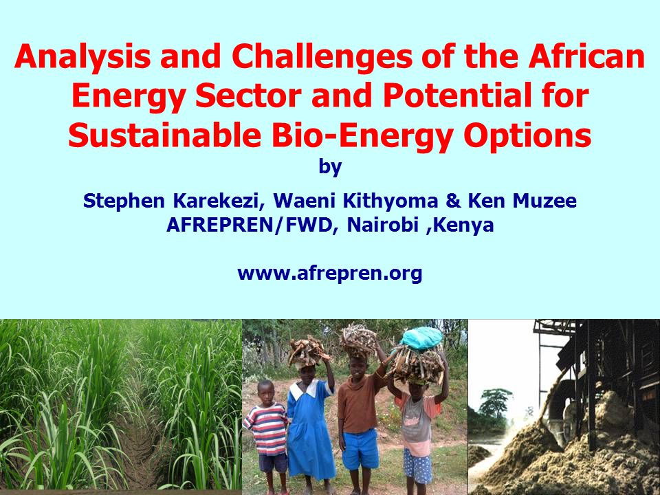 Analysis and Challenges of the African Energy Sector and Potential for Sustainable Bio-Energy Options by Stephen Karekezi, Waeni Kithyoma & Ken Muzee AFREPREN/FWD, Nairobi,Kenya www.afrepren.org