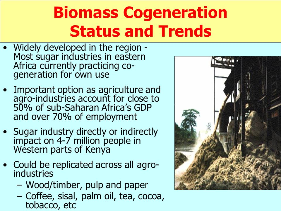 Biomass Cogeneration Status and Trends Widely developed in the region - Most sugar industries in eastern Africa currently practicing co- generation for own use Important option as agriculture and agro-industries account for close to 50% of sub-Saharan Africa's GDP and over 70% of employment Sugar industry directly or indirectly impact on 4-7 million people in Western parts of Kenya Could be replicated across all agro- industries –Wood/timber, pulp and paper –Coffee, sisal, palm oil, tea, cocoa, tobacco, etc