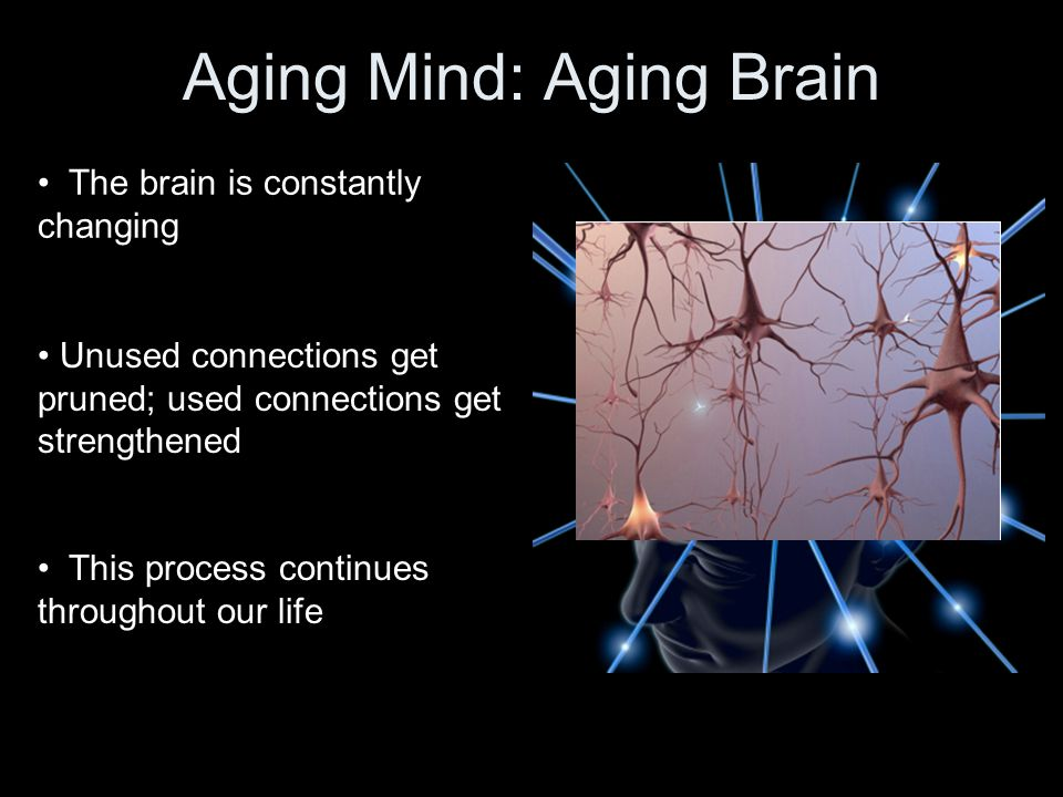 Long-Term Memory Must STORE information (e.g., people's names) Requires functioning of the hippocampus This is one of the regions that shrinks some with aging, and even more with Alzheimer's disease