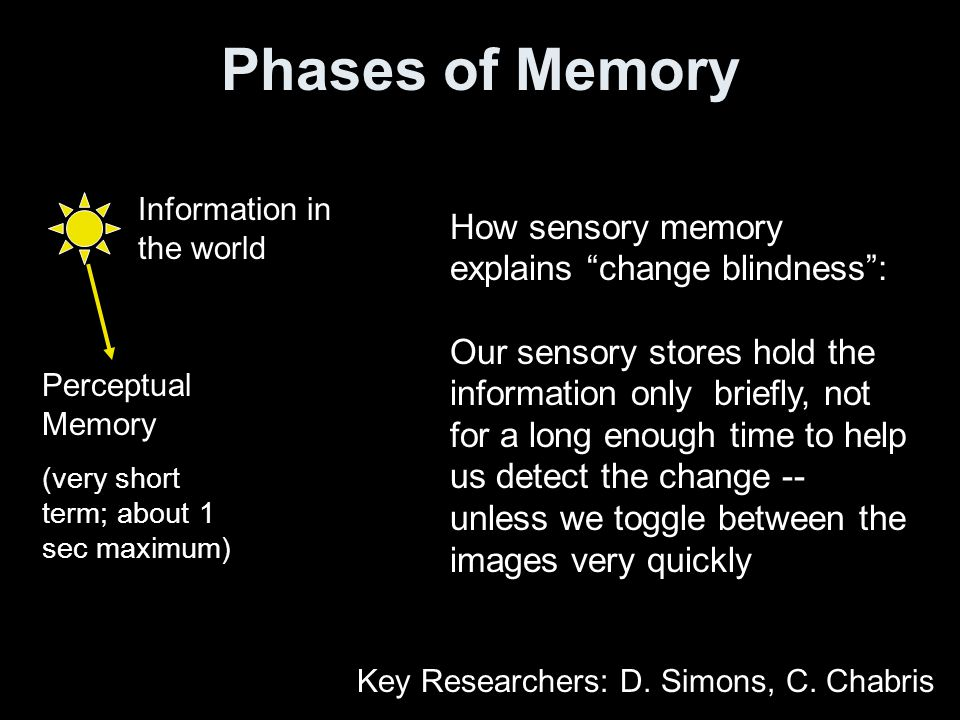 Phases of Memory Information in the world Working (Short-Term) Memory (~45 sec maximum) Perceptual Memory (very short term; 1-2 sec maximum) Long-term Memory (minutes to years) Remote Memory (many years) Semantic Memory (factual knowledge) Rehearsal over long periods of time organizing info.