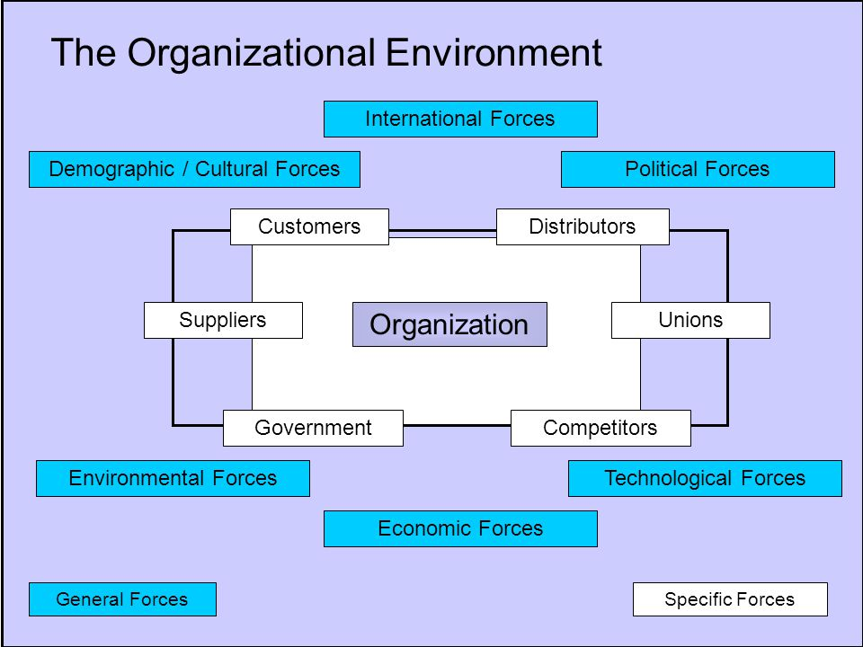 2 The Organizational Environment Organization Specific Forces Demographic / Cultural Forces General Forces Environmental Forces Economic Forces Technological Forces International Forces Political Forces Customers Government SuppliersUnions Distributors Competitors