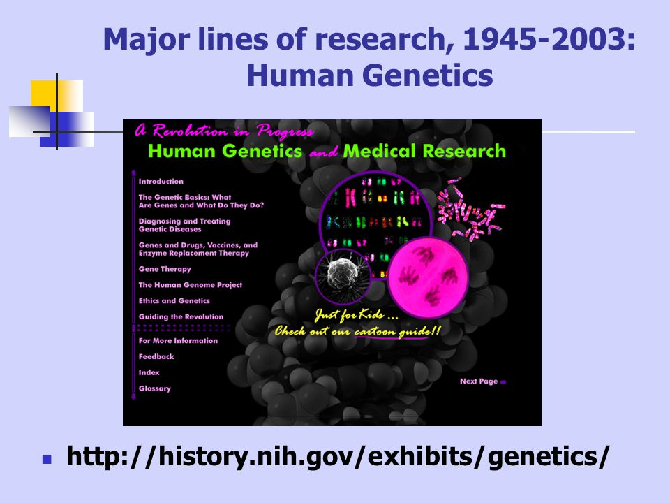 Major lines of research, 1945-2003: Human Genetics http://history.nih.gov/exhibits/genetics/