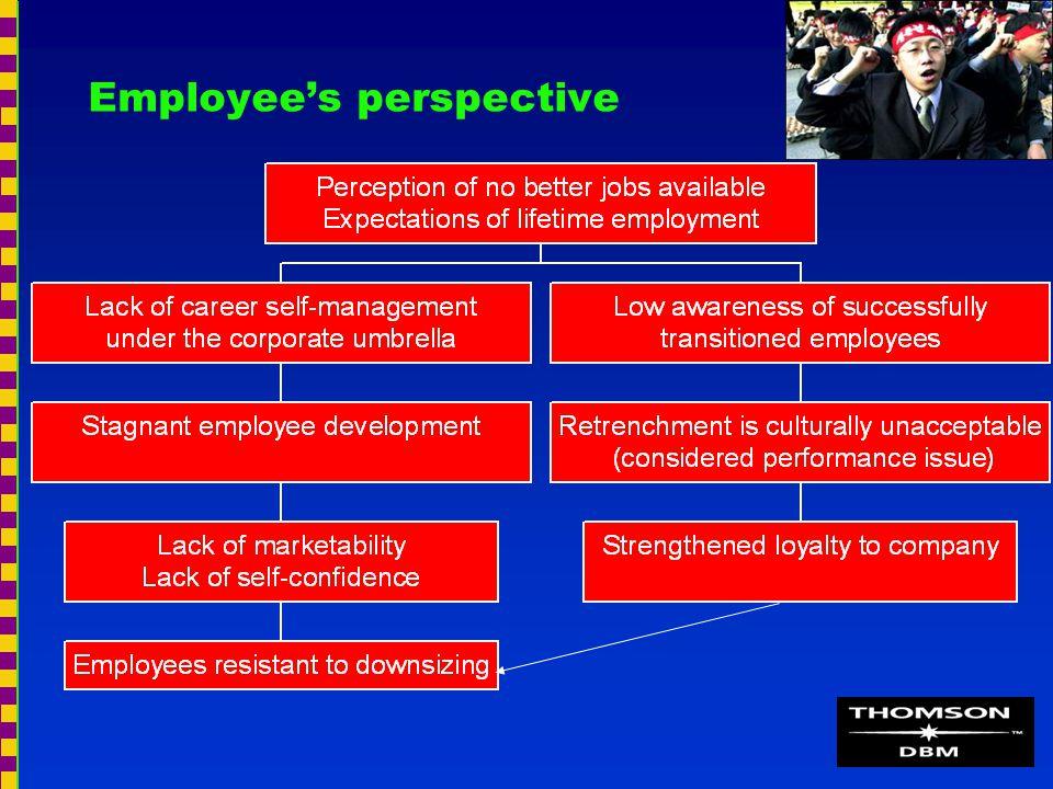 Employee's perspective