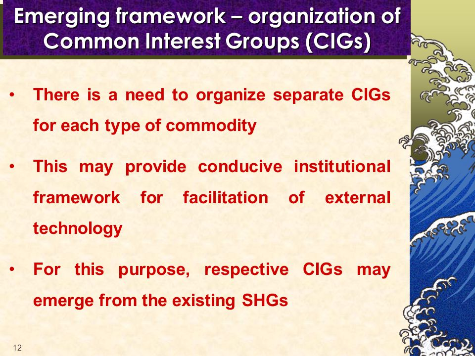 12 Emerging framework – organization of Common Interest Groups (CIGs) There is a need to organize separate CIGs for each type of commodity This may provide conducive institutional framework for facilitation of external technology For this purpose, respective CIGs may emerge from the existing SHGs
