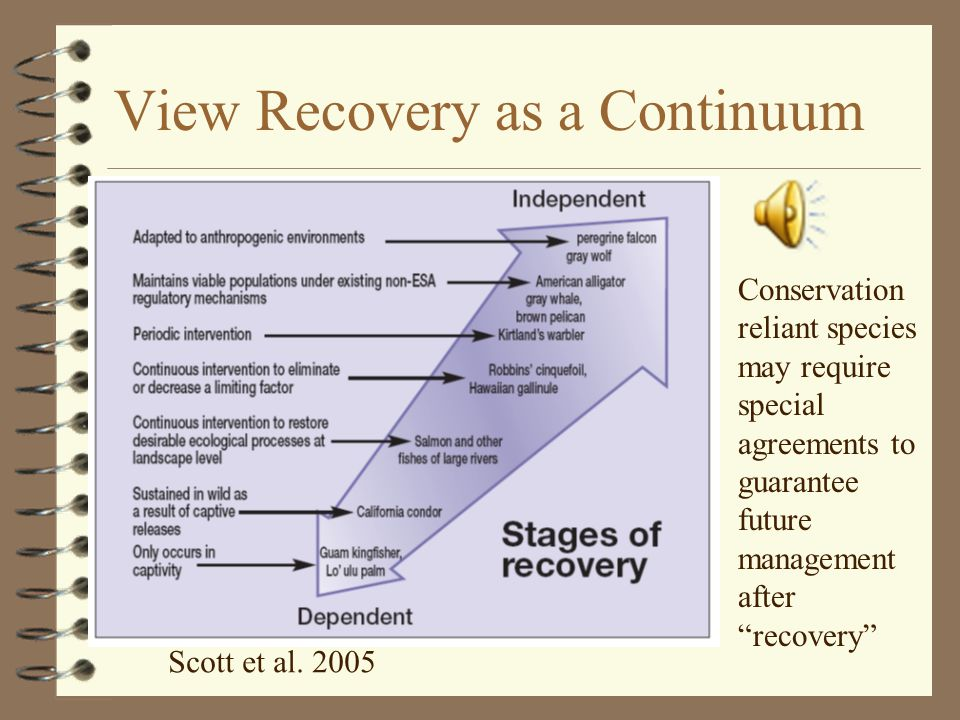 View Recovery as a Continuum Scott et al.