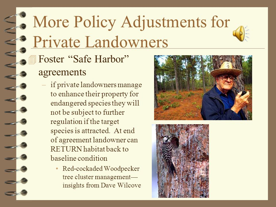 More Policy Adjustments for Private Landowners 4 Foster Safe Harbor agreements –if private landowners manage to enhance their property for endangered species they will not be subject to further regulation if the target species is attracted.
