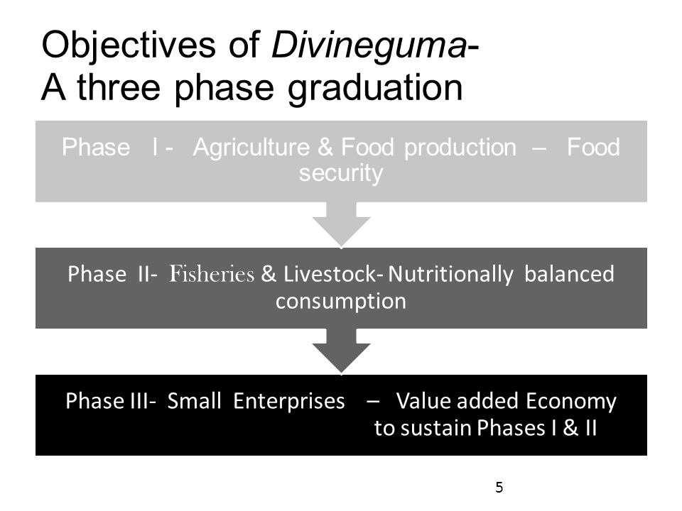 Objectives of Divineguma- A three phase graduation Phase III- Small Enterprises – Value added Economy to sustain Phases I & II Phase II- Fisheries & Livestock- Nutritionally balanced consumption Phase I - Agriculture & Food production – Food security 5
