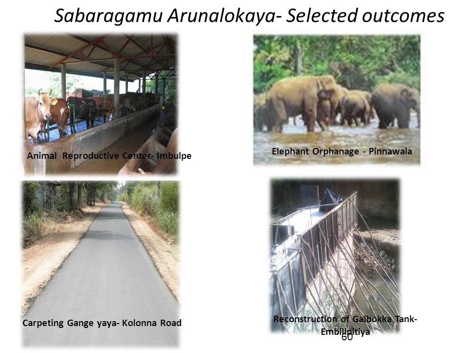 Sabaragamu Arunalokaya- Selected outcomes Elephant Orphanage - Pinnawala Carpeting Gange yaya- Kolonna Road Reconstruction of Galbokka Tank- Embilipit