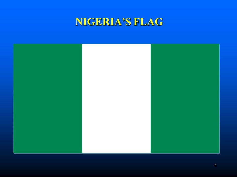 NIGERIA'S FLAG 4