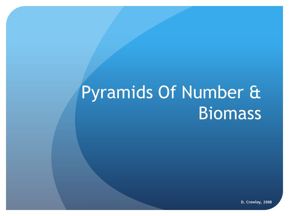Pyramids Of Number & Biomass D. Crowley, 2008