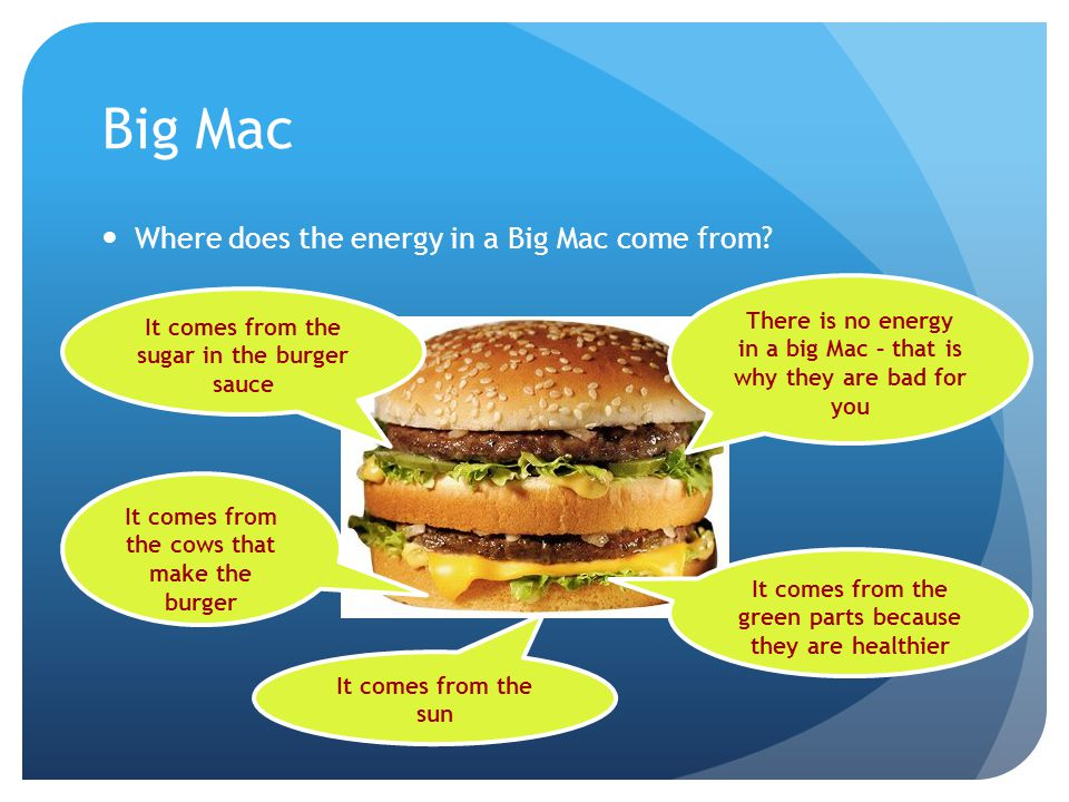 Big Mac Where does the energy in a Big Mac come from? It comes from the cows that make the burger It comes from the sugar in the burger sauce There is