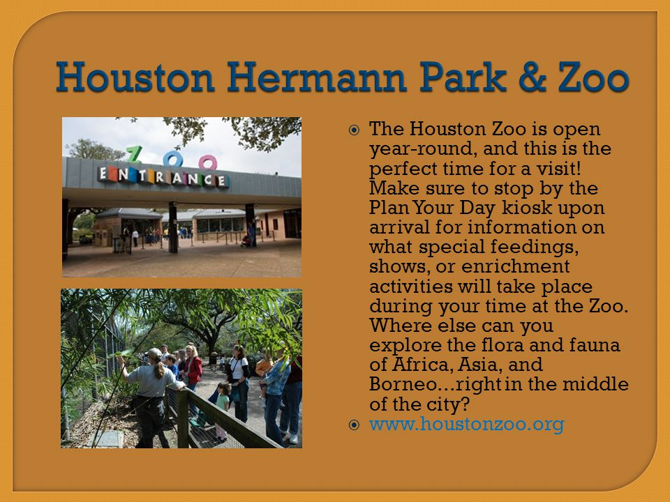  The Houston Zoo is open year-round, and this is the perfect time for a visit! Make sure to stop by the Plan Your Day kiosk upon arrival for informat
