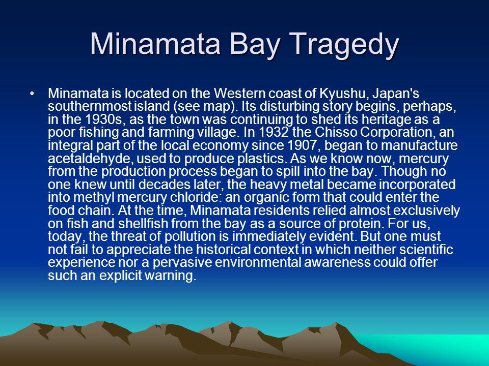Minamata Bay Tragedy Minamata is located on the Western coast of Kyushu, Japan's southernmost island (see map). Its disturbing story begins, perhaps,
