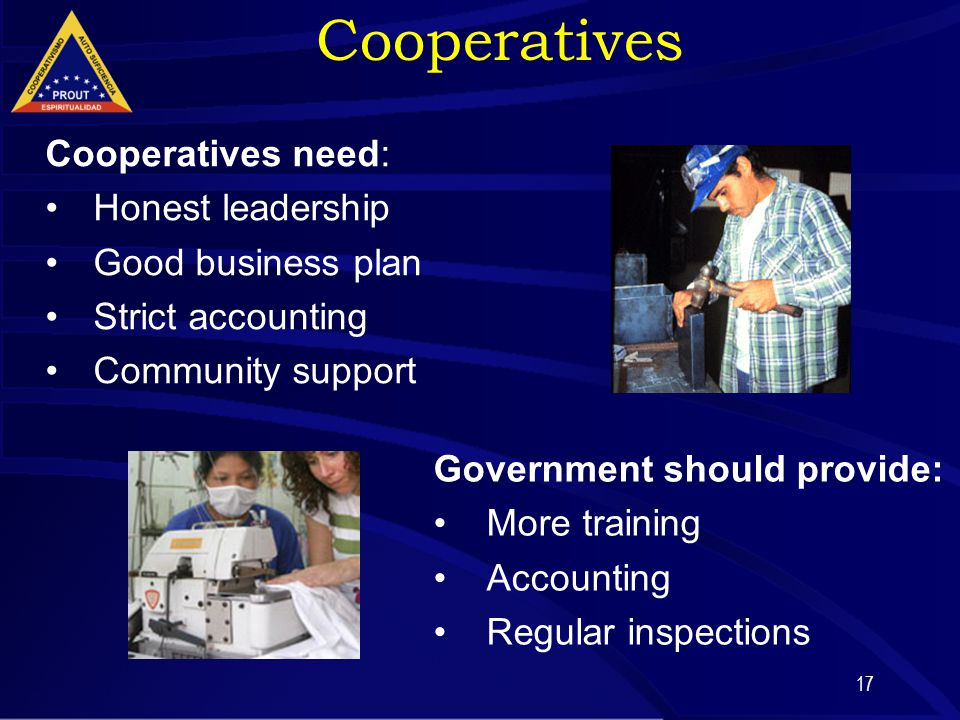 17 Cooperatives need: Honest leadership Good business plan Strict accounting Community support Government should provide: More training Accounting Reg
