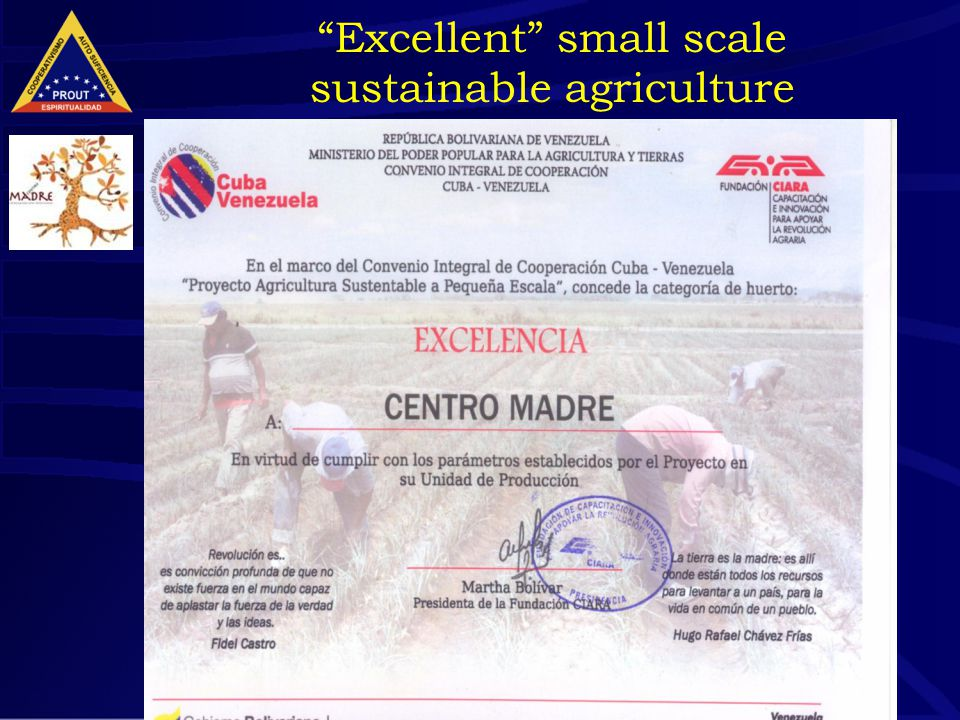 "39 ""Excellent"" small scale sustainable agriculture"