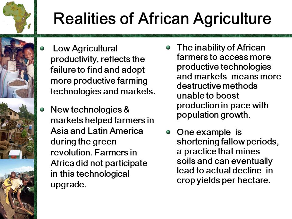 Realities of African Agriculture Low Agricultural productivity, reflects the failure to find and adopt more productive farming technologies and markets.