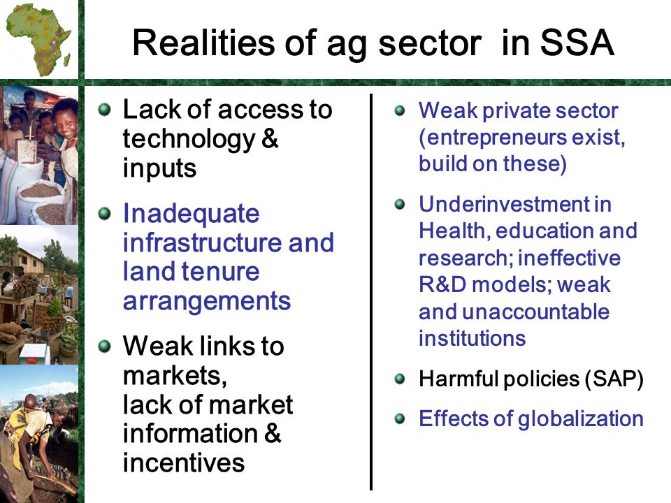 Realities of ag sector in SSA Lack of access to technology & inputs Inadequate infrastructure and land tenure arrangements Weak links to markets, lack of market information & incentives Weak private sector (entrepreneurs exist, build on these) Underinvestment in Health, education and research; ineffective R&D models; weak and unaccountable institutions Harmful policies (SAP) Effects of globalization