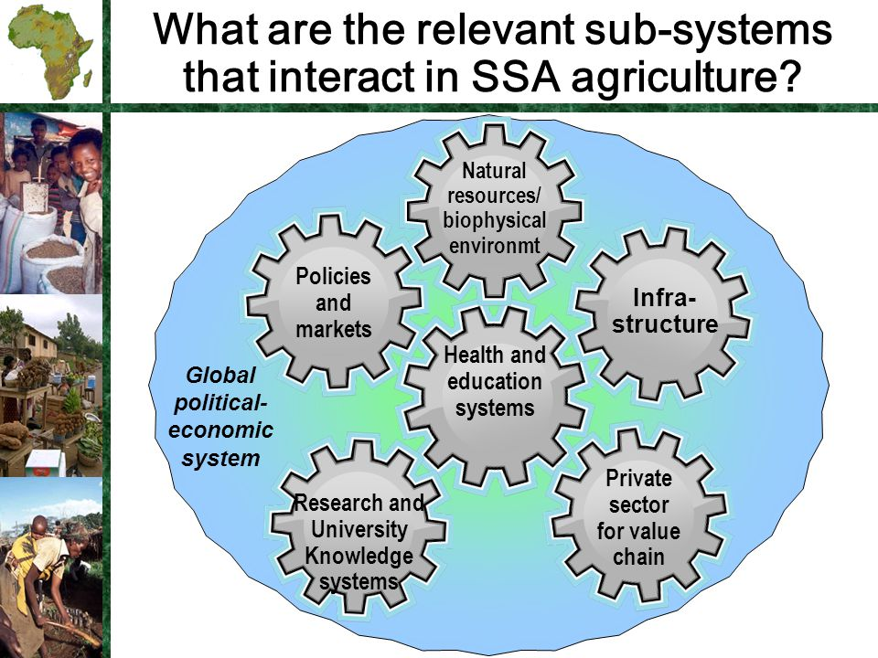What are the relevant sub-systems that interact in SSA agriculture.