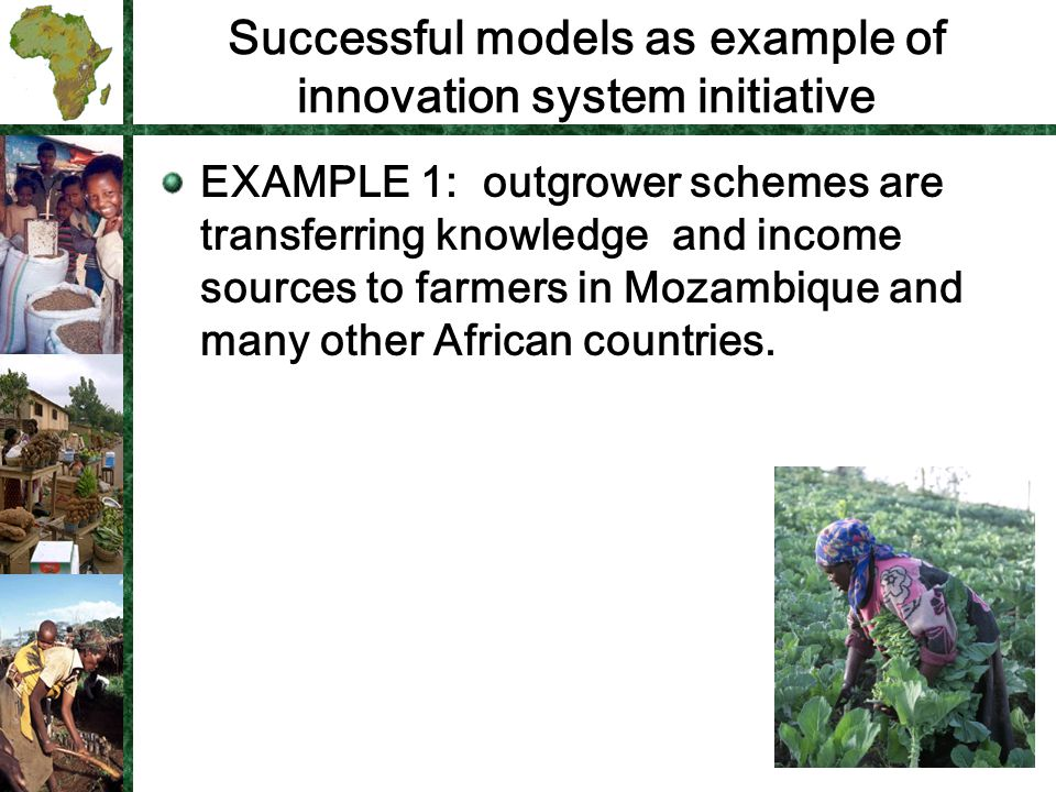 Successful models as example of innovation system initiative EXAMPLE 1: outgrower schemes are transferring knowledge and income sources to farmers in Mozambique and many other African countries.