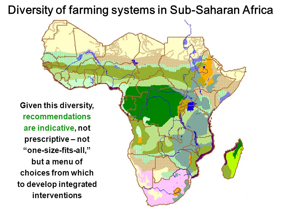 Agricultural production system Characteristics: Traditional, subsistence oriented – agriculture as a way of life not 4 market.
