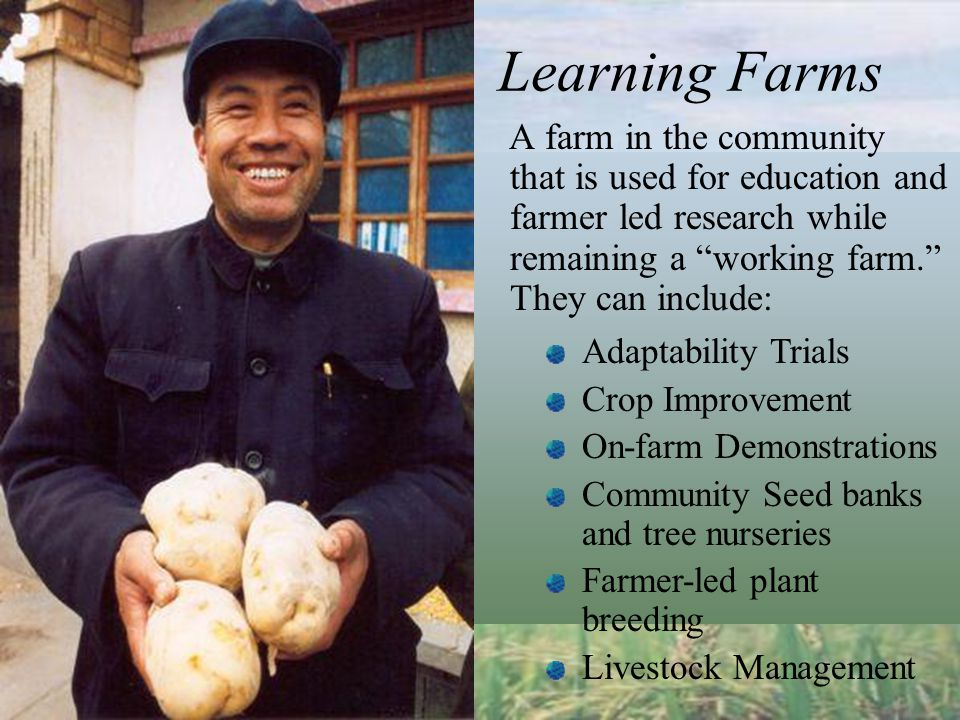 Learning Farms A farm in the community that is used for education and farmer led research while remaining a working farm. They can include: Adaptability Trials Crop Improvement On-farm Demonstrations Community Seed banks and tree nurseries Farmer-led plant breeding Livestock Management