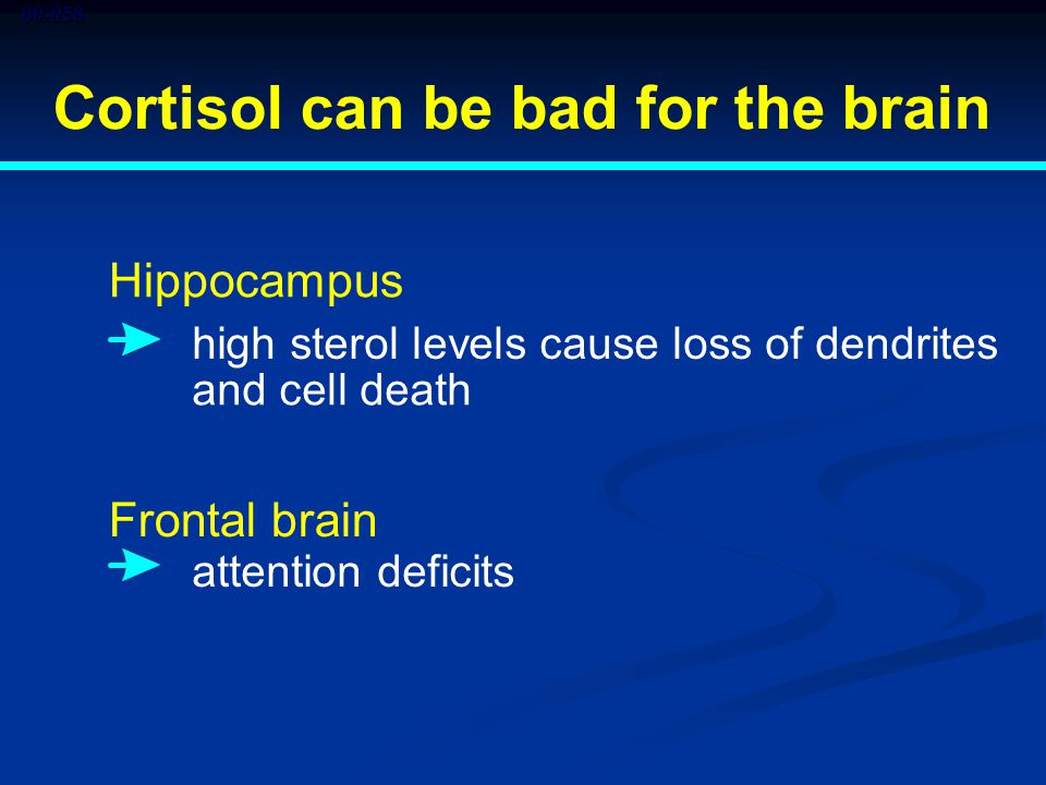 00-058 Cortisol can be bad for the brain Hippocampus high sterol levels cause loss of dendrites and cell death Frontal brain attention deficits