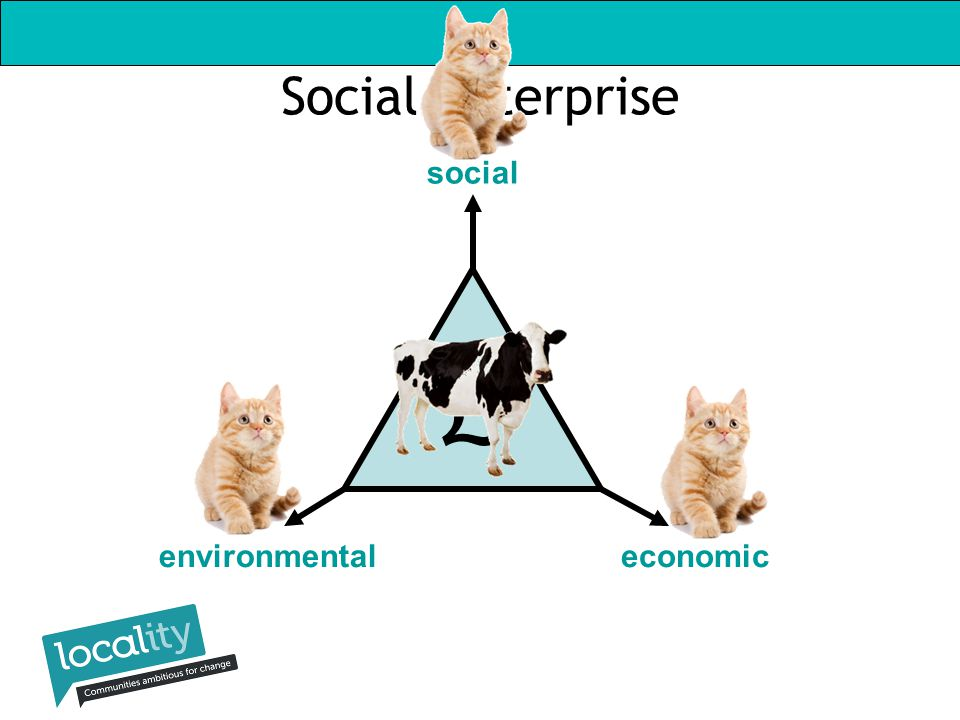 Social Enterprise social environmentaleconomic £