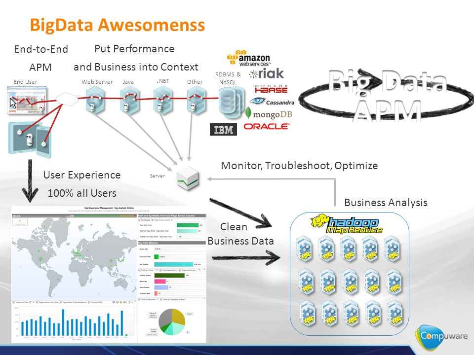 RDBMS & NoSQL Business Analysis Clean Business Data End-to-End APM User Experience 100% all Users Monitor, Troubleshoot, Optimize Put Performance and