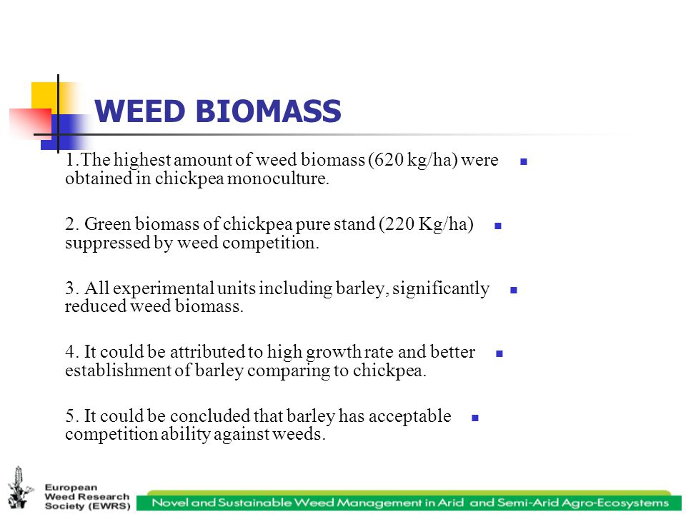 WEED BIOMASS 1.The highest amount of weed biomass (620 kg/ha) were obtained in chickpea monoculture.