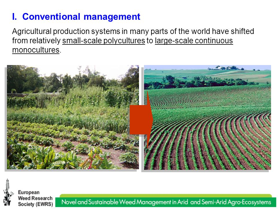 I. Conventional management Agricultural production systems in many parts of the world have shifted from relatively small-scale polycultures to large-s