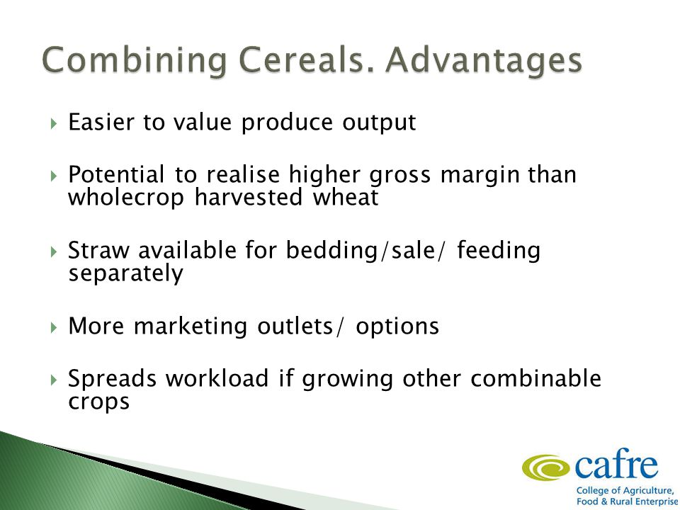  Easier to value produce output  Potential to realise higher gross margin than wholecrop harvested wheat  Straw available for bedding/sale/ feeding