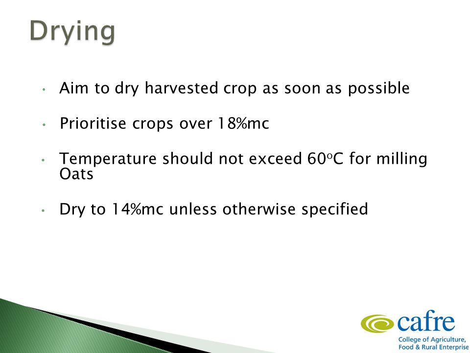 Aim to dry harvested crop as soon as possible Prioritise crops over 18%mc Temperature should not exceed 60 o C for milling Oats Dry to 14%mc unless ot