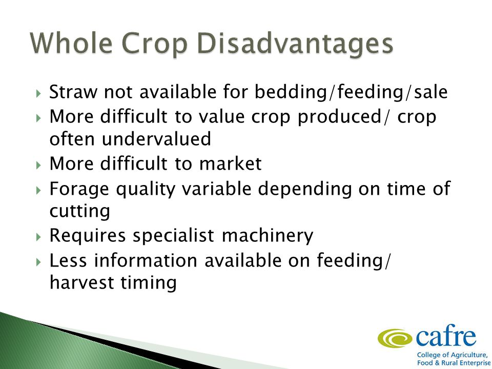  Straw not available for bedding/feeding/sale  More difficult to value crop produced/ crop often undervalued  More difficult to market  Forage qua