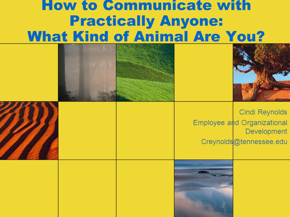 How to Communicate with Practically Anyone: What Kind of Animal Are You.