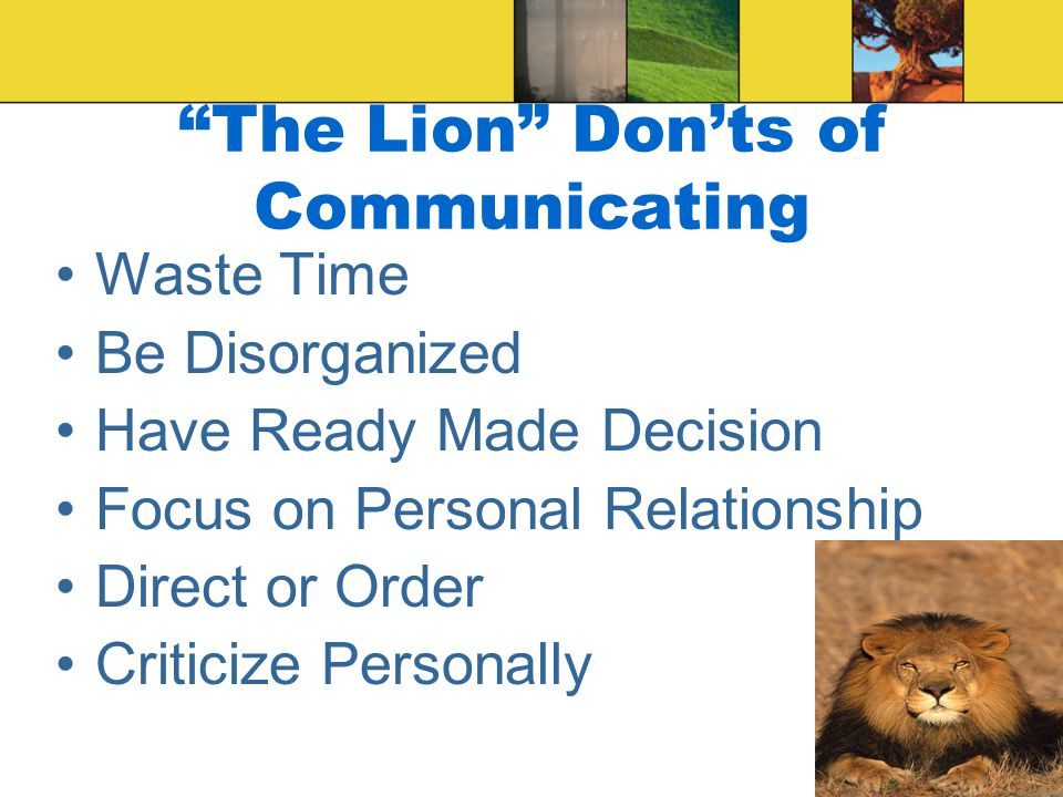 The Lion DO's of Communicating Be Specific, Be Clear, and Be Brief Stick to Business Provide Options and Probabilities Support Results Take Issue with Facts, not the Person Be Efficient