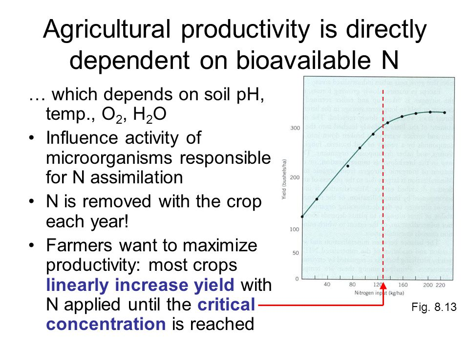 Agricultural productivity is directly dependent on bioavailable N … which depends on soil pH, temp., O 2, H 2 O Influence activity of microorganisms responsible for N assimilation N is removed with the crop each year.