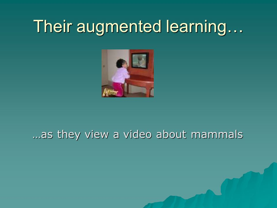 Their augmented learning… …as they view a video about mammals