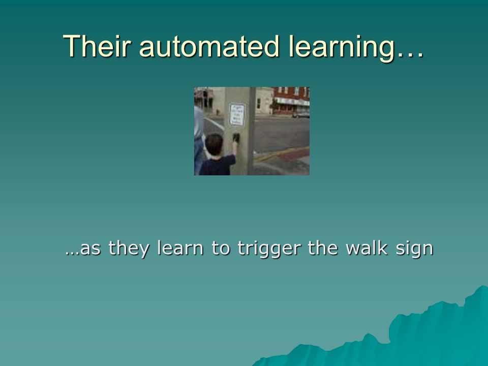 Their automated learning… …as they learn to trigger the walk sign