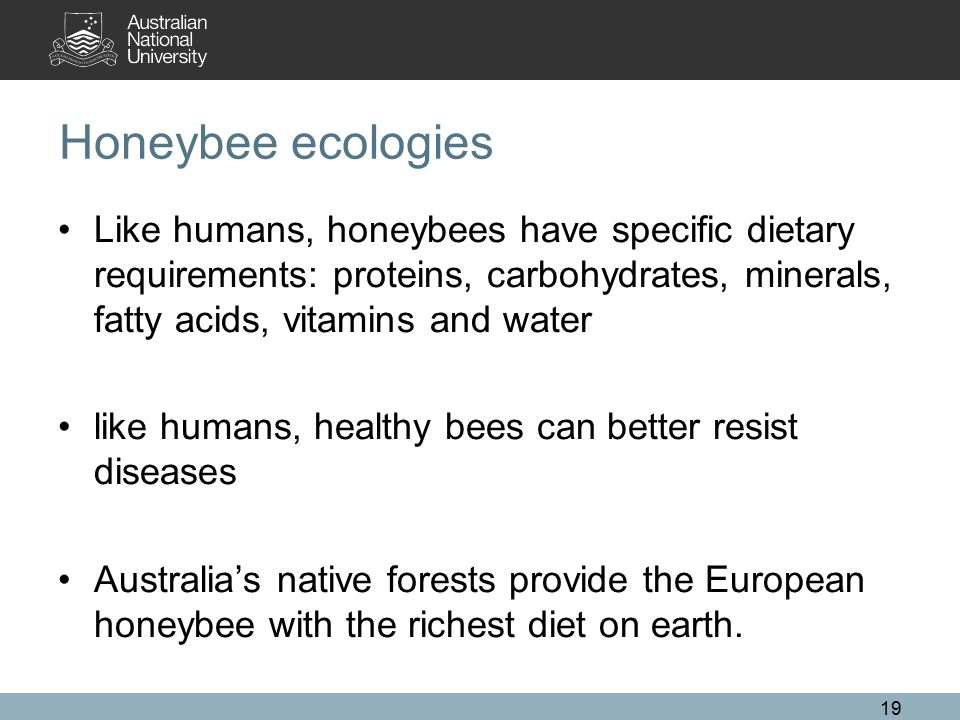 Honeybee ecologies Like humans, honeybees have specific dietary requirements: proteins, carbohydrates, minerals, fatty acids, vitamins and water like