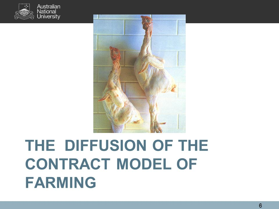 THE DIFFUSION OF THE CONTRACT MODEL OF FARMING 6