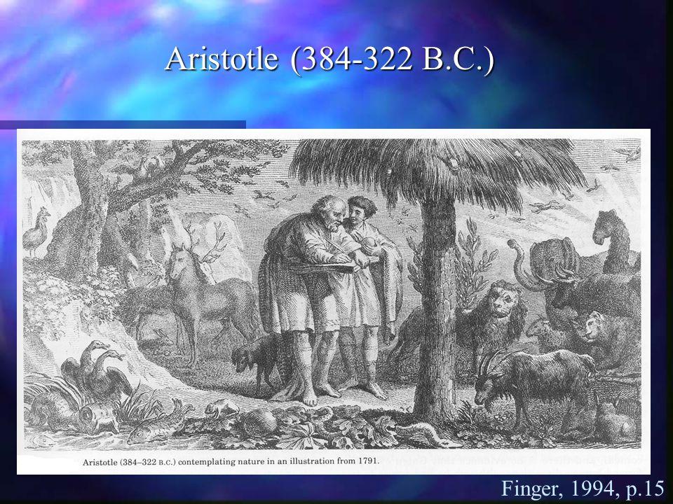 Finger, 1994, p.15 Aristotle (384-322 B.C.)